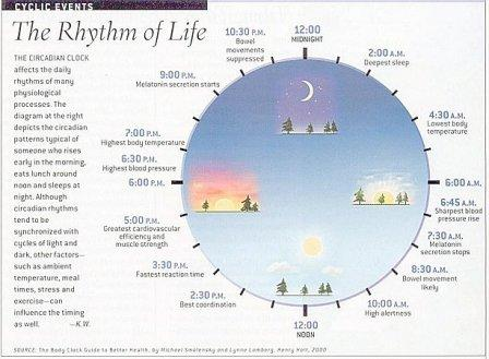 Interesting facts about our health when we sleep.
