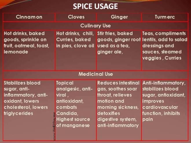 Spice Usage