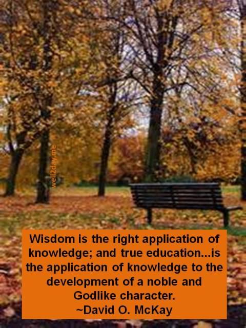 Between Knowledge & Wisdom