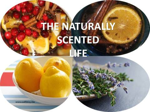 The Naturally Scented Life