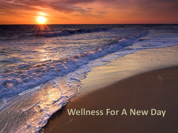 Wellness For A New Day